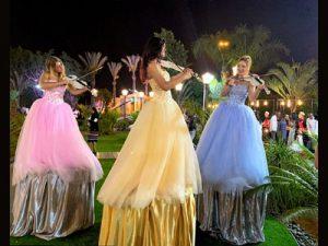 מייצגים לאירועים - כנריות מקצועיות לחתונה